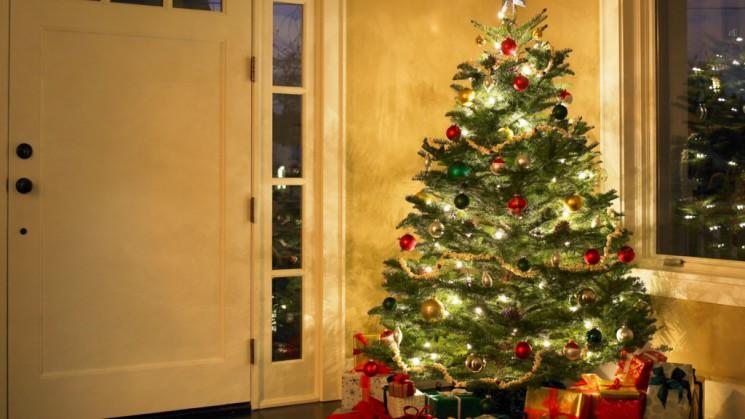 Kerstboom actie